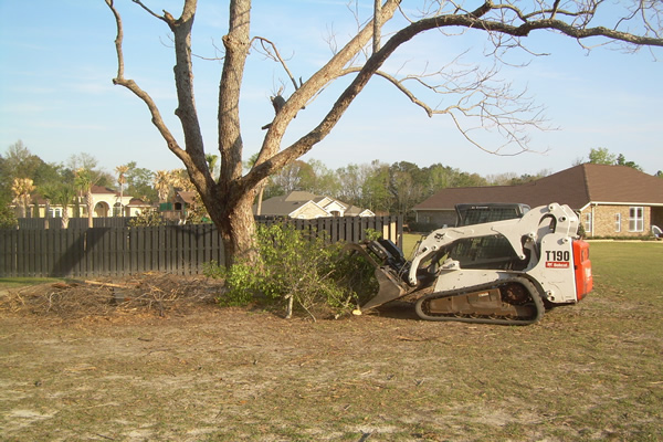 Emergency Cleanup Services by Reliable Landscaping