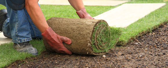 sod installation nashville TN