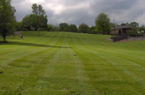 Lawn Maintenance Nashville Tennessee, White House & Surrounding areas.