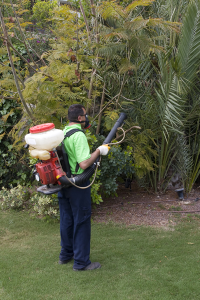Turf and Weed Control By Reliable Landscape.