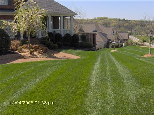 Manicured mowing